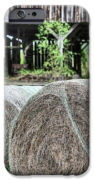 Hay iPhone Case by JC Findley