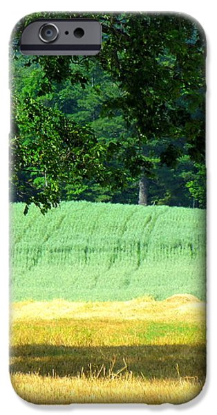 Hay Landscape iPhone Case by France Laliberte