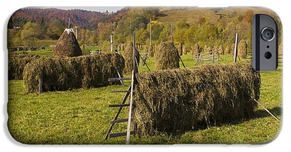 Agricultural iPhone Cases - Hay Racks And Stooks, Romania iPhone Case by Bob Gibbons