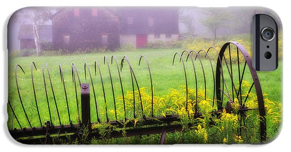 Old Barns iPhone Cases - Hayrake and Goldenrod- Berkshire Country iPhone Case by Thomas Schoeller