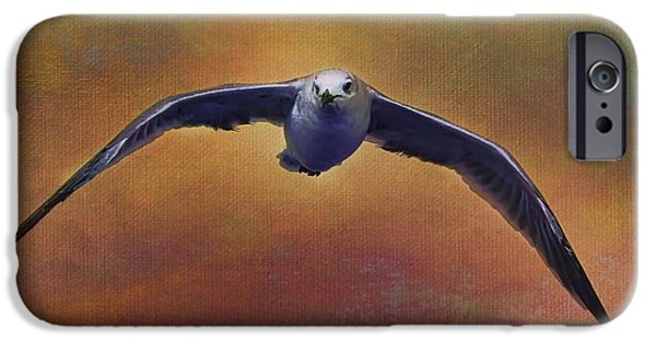 Seagull Mixed Media iPhone Cases - Heading Home iPhone Case by Deborah Benoit