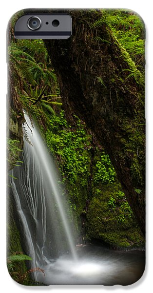 Forest iPhone Cases - Hidden Falls iPhone Case by Mike Reid