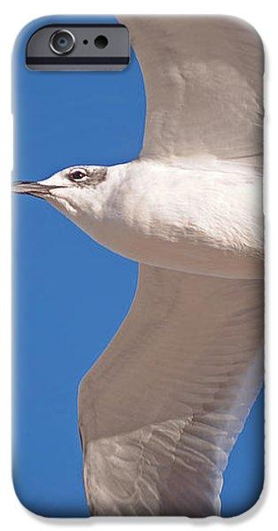 High Flight iPhone Case by Kenneth Albin