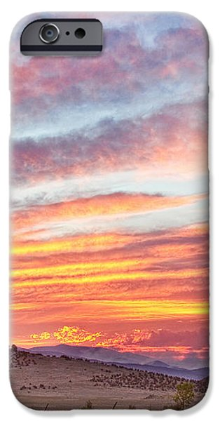 High Park Wildfire Sunset Sky iPhone Case by James BO  Insogna