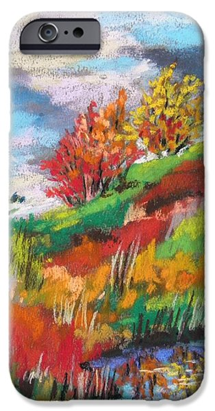 Field. Cloud Drawings iPhone Cases - Hill Pond iPhone Case by John  Williams