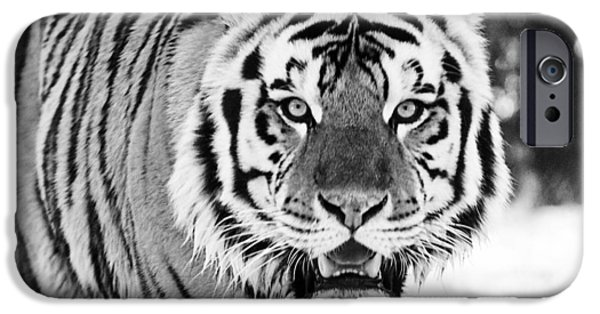 Mike The Tiger iPhone Cases - His Majesty iPhone Case by Scott Pellegrin