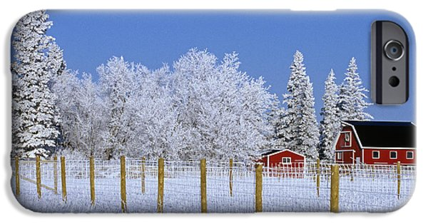 Best Sellers -  - Red Barn In Winter iPhone Cases - Hoarfrost On Trees Around Red Barns iPhone Case by Mike Grandmailson