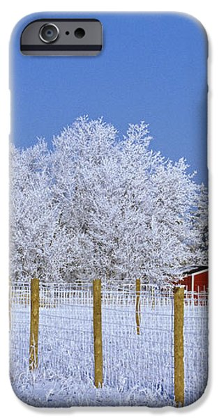 Hoarfrost On Trees Around Red Barns iPhone Case by Mike Grandmailson