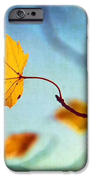 Holding On iPhone Case by Darren Fisher
