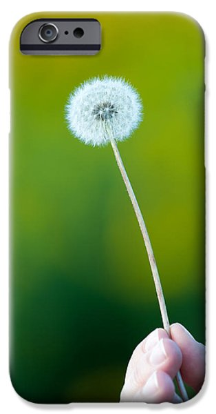 Fall Photographs iPhone Cases - Holding on to the last days of summer iPhone Case by Sebastian Musial