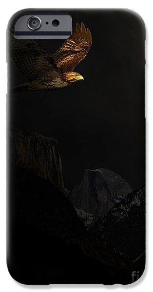 Free Mixed Media iPhone Cases - Homeward Bound iPhone Case by Wingsdomain Art and Photography