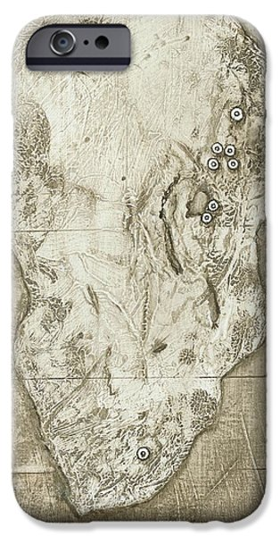Evolution Of Humanity iPhone Cases - Hominid Fossil Sites In Africa iPhone Case by Kennis And Kennismsf