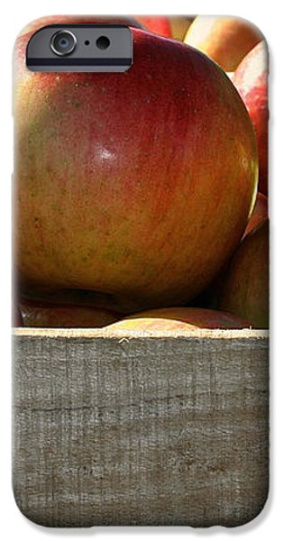 Honey Crisp iPhone Case by Susan Herber