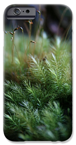 Abstracts From Nature iPhone Cases - Hoomalumalu Kuhiwa iPhone Case by Sharon Mau