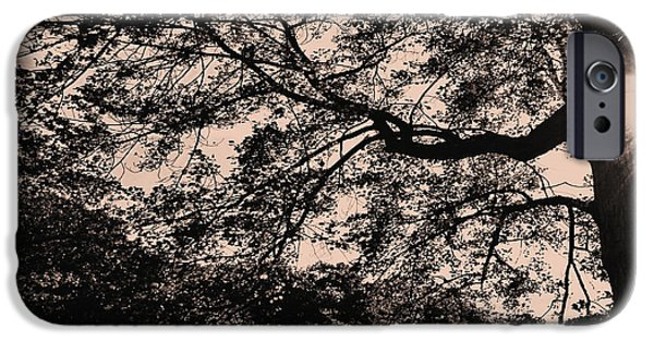Sepia iPhone Cases - Hope in the Midst of Darkness iPhone Case by Lourry Legarde