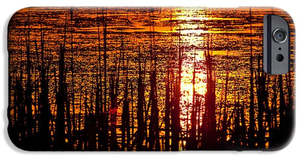 Willow Lake iPhone Cases - Horicon Marsh Sunset Wisconsin iPhone Case by Steve Gadomski