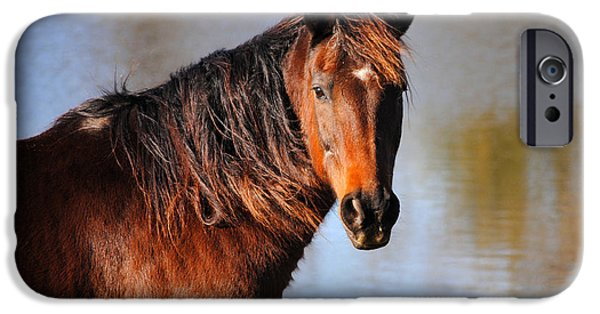 Horse By The Water iPhone Case by Jai Johnson