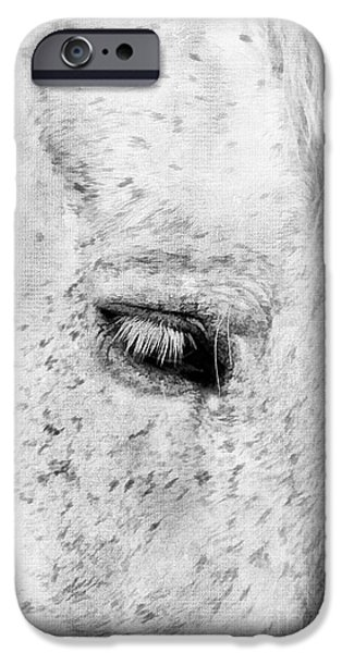 Horse Eye iPhone Case by Darren Fisher