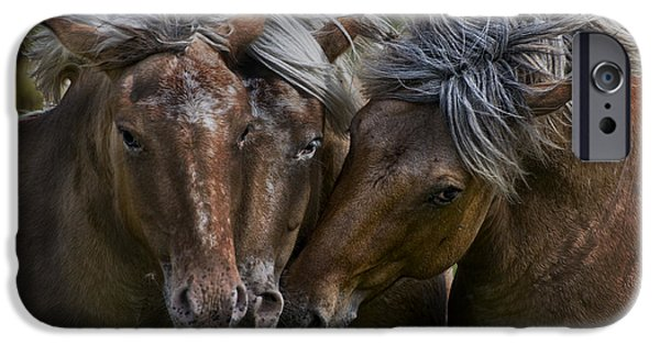 Wildlife Photographer Mixed Media iPhone Cases - Horse Lords iPhone Case by Michael Cummings