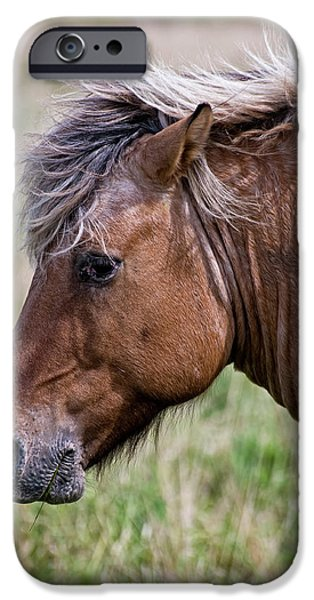Wildlife Photographer Mixed Media iPhone Cases - Horse Portrait iPhone Case by Michael Cummings
