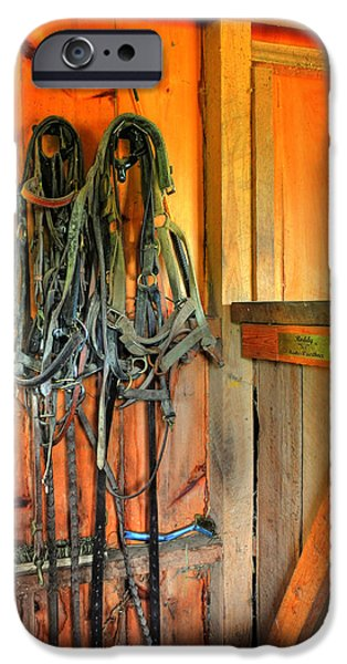 Horse Bit iPhone Cases - Horse Tack iPhone Case by Paul Ward