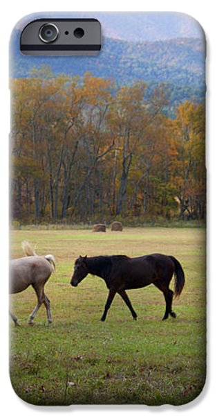 Horses iPhone Case by Lena Auxier
