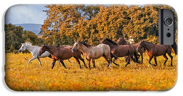 Autumn iPhone Cases - Horses Running Free iPhone Case by Susan Candelario