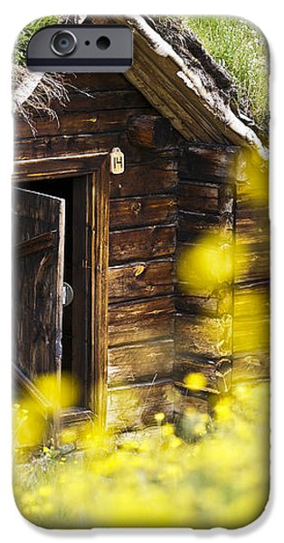 House behind Yellow Flowers iPhone Case by Heiko Koehrer-Wagner