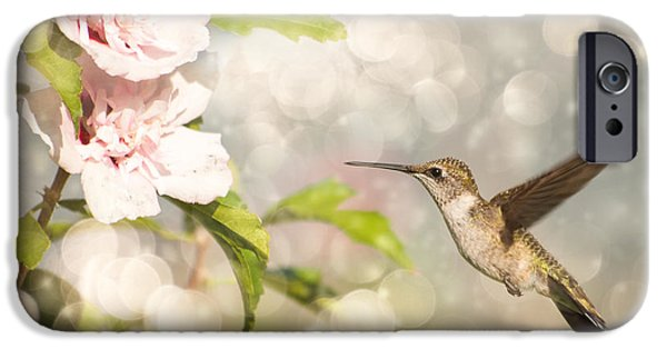 Althea iPhone Cases - Hummer and Hibiscus iPhone Case by Sari ONeal