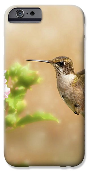 Hummingbird Hovering iPhone Case by Sari ONeal