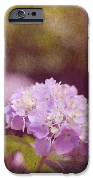 Purple Hydrangeas iPhone Cases - Hydrangea iPhone Case by Amy Tyler