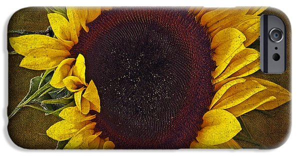 Sunflower iPhone Cases - I Dance With The Sun iPhone Case by Susan Candelario
