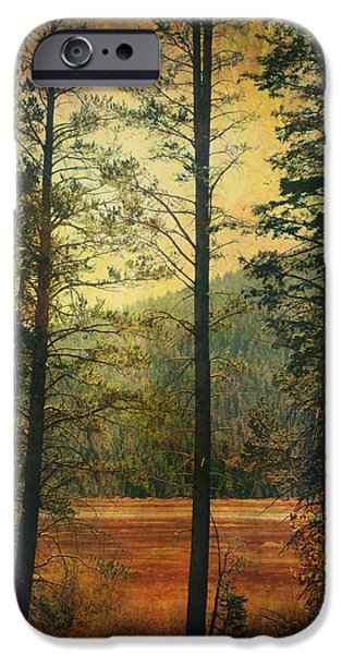 Textured Landscape iPhone Cases - I Dont Know What to Believe In iPhone Case by Laurie Search