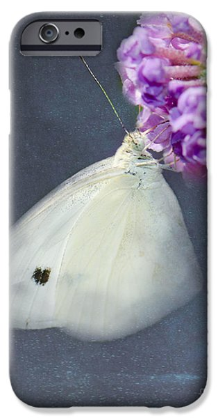 Cabbage White Butterfly iPhone Cases - I Dream of a White Butterfly iPhone Case by Betty LaRue