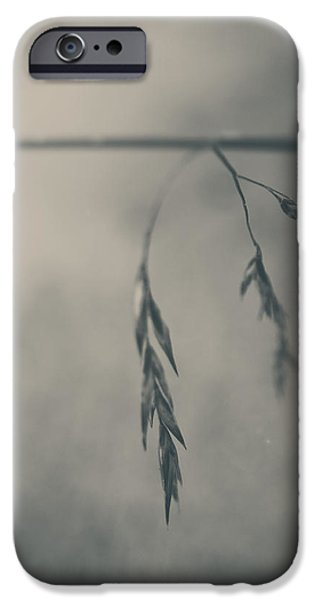 Monotone iPhone Cases - If You Lost Your Love For Me iPhone Case by Laurie Search