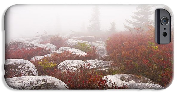 Sod iPhone Cases - In a Fog - Dolly Sods West Virginia iPhone Case by Bill Swindaman