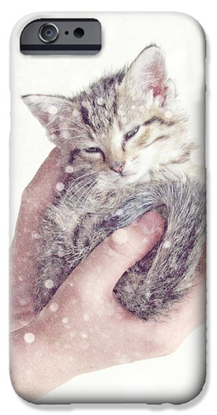 In Safe Hands  iPhone Case by Amy Tyler