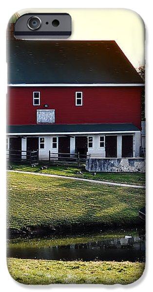 In the Barn Yard iPhone Case by Bill Cannon