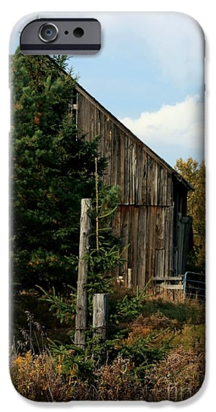 Old Barn iPhone Cases - In the Middle of Nowhere iPhone Case by Marjorie Imbeau