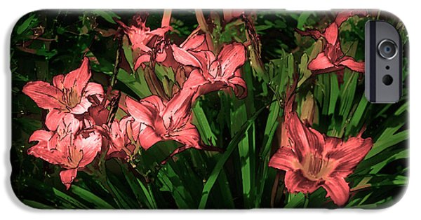 Artistic Photography iPhone Cases - In the Pink iPhone Case by Tom Prendergast