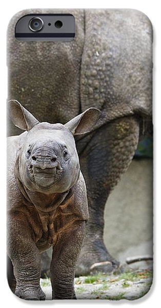 Indian Rhinoceros Rhinoceros Unicornis iPhone Case by Konrad Wothe