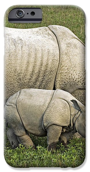 Indian Rhinoceroses iPhone Case by Tony Camacho
