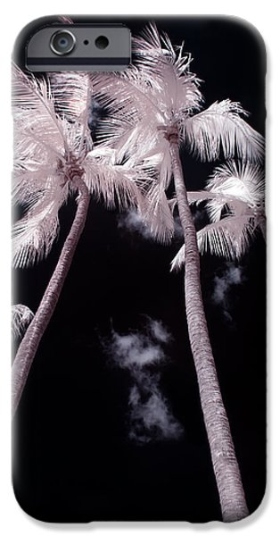 Nature Study Digital Art iPhone Cases - Infrared Palm Trees iPhone Case by Adam Romanowicz