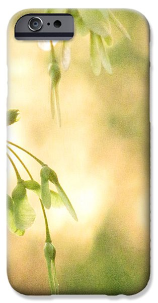 Interlude iPhone Case by Amy Tyler