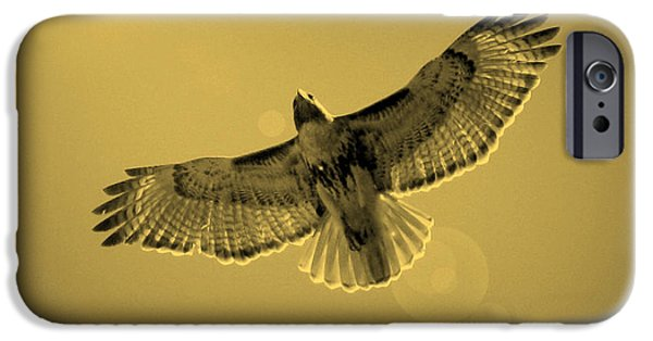 Hawk iPhone Cases - Into the Light - Sepia iPhone Case by Carol Groenen