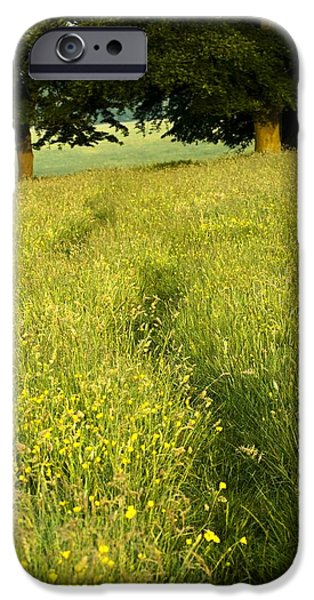 Nature Scene iPhone Cases - Ireland Trail Through Buttercup Meadow iPhone Case by Peter McCabe