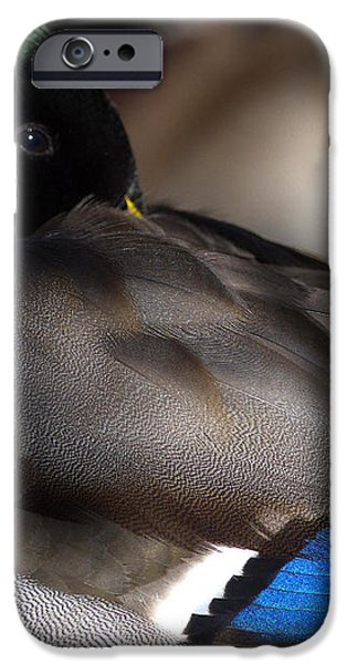 Iridescent Blue iPhone Case by Sharon  Talson