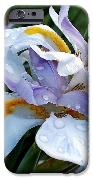 Iris enjoying the Sunshine iPhone Case by Kaye Menner