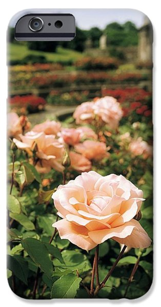 Garden Statuary iPhone Cases - Irish National War Memorial Gardens iPhone Case by The Irish Image Collection