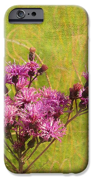 Ironweed in Autumn iPhone Case by Judi Bagwell